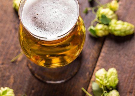 Conheça as principais matérias primas da cerveja