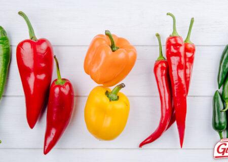 Tipos de Pimenta e seus benefícios 1